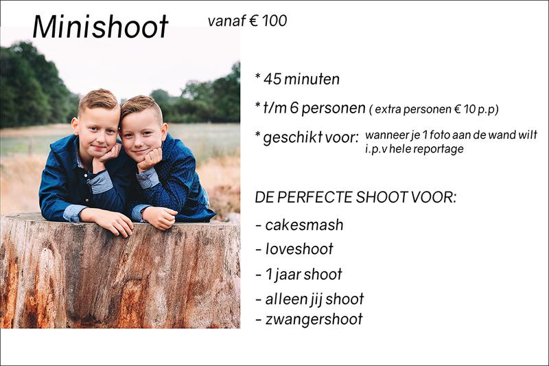 minishoot