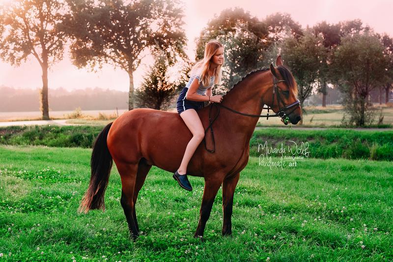 paardenshoot