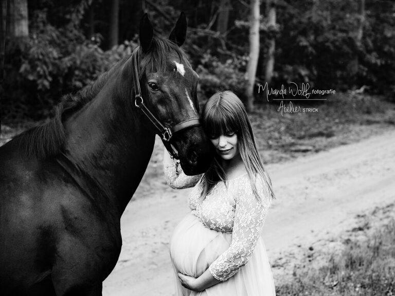paardenshoot zwanger